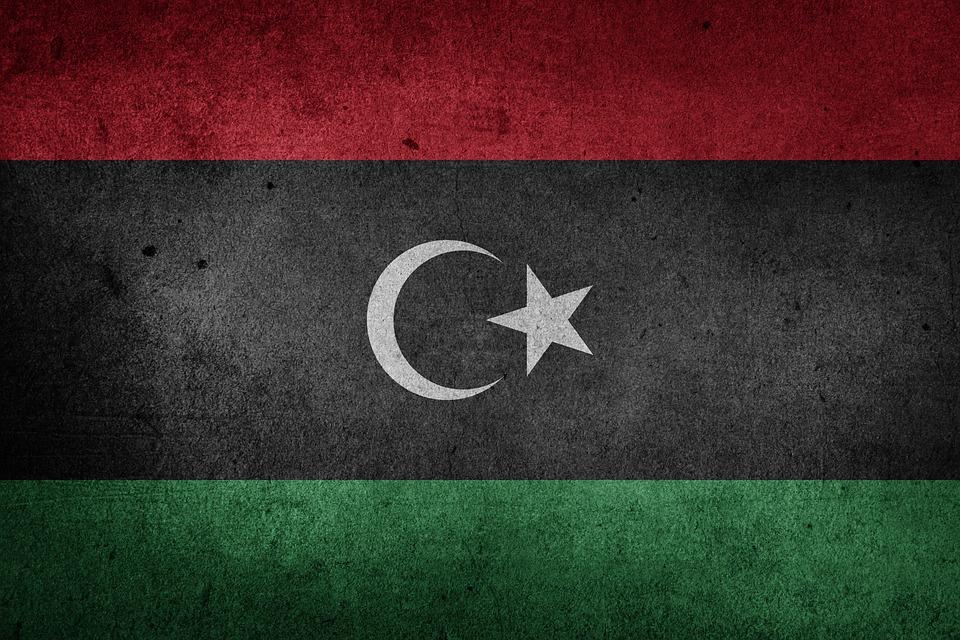 Россияне пожелали мира и процветания Ливии при встрече с главой парламента Агилой Салехом
