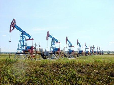 Спикер ЛНА рассказал, как «Братья-мусульмане»* сорвали переговоры по возобновлению поставок нефти Ливии