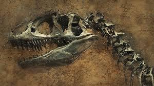 Палеонтологи обнаружили в Аргентине останки самого крупного динозавра