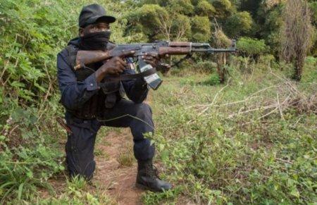 Премьер-министр ЦАР сообщил об освобождении столицы префектуры Верхнее Котто